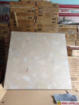 60x60 đá mờ 3D 117N