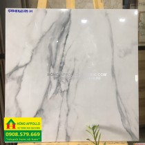 Gạch 6060 đá bóng kính vân đá màu trắng unis -HỒNG APPOLLO