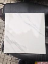Gạch 50x50 mài cạnh 95n/m2