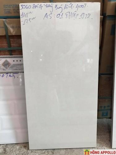 GẠCH ỐP TƯỜNG 30x60 MS01t1828 đá bóng kính