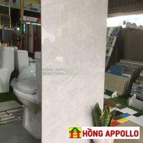 Gạch ốp lát phòng khách 60x120 bóng kính trắng Hiệp Thủy- HONGAPPOLLO