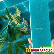 Gạch thẻ trang trí màu xanh- HỒNG APPOLLO