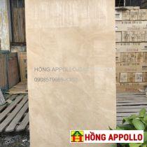 Giá Gạch 60x120 AMY ốp tường phòng khách đẹp rẻ sang trọng