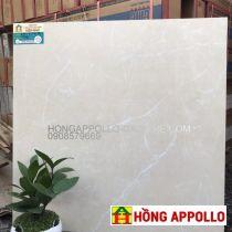 Gạch 60x60 cao cấp giá rẻ Nha Trang