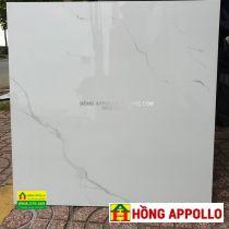 Gạch lát nền 60x60, Gach-60x60-6001-nice-HONG-APPOLLO