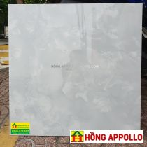 Báo giá gach-60x60-6005-nice-HONG-APPOLLO